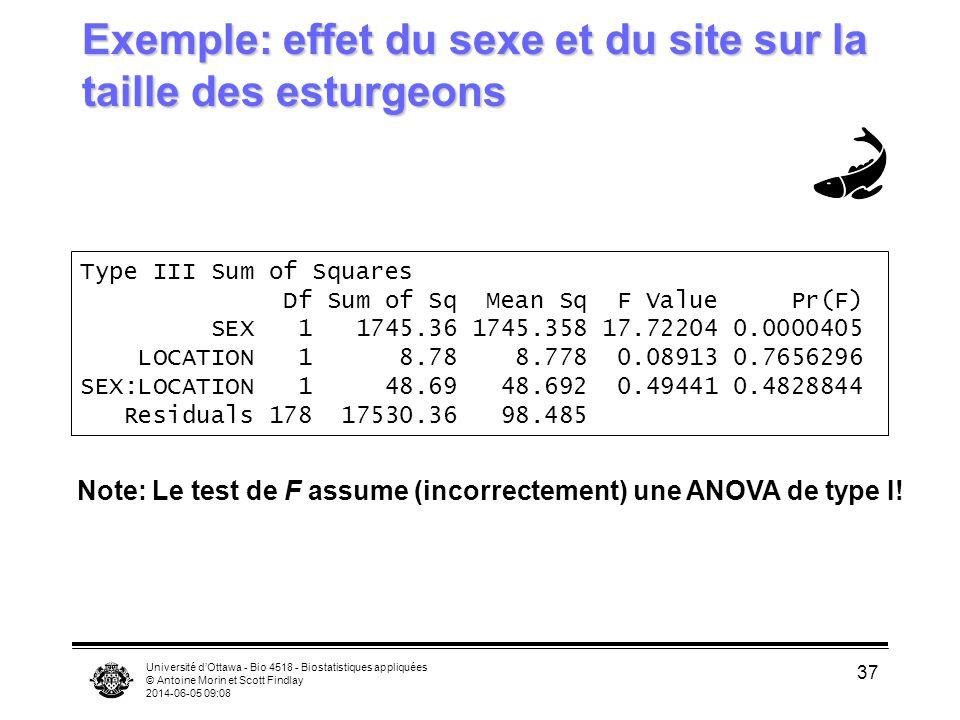 Exemple: effet du sexe et du site sur la taille des esturgeons