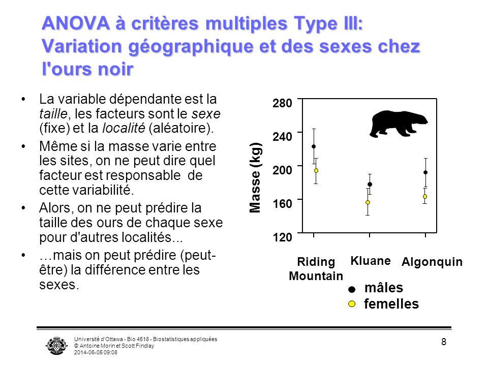 ANOVA à critères multiples Type III: Variation géographique et des sexes chez l ours noir
