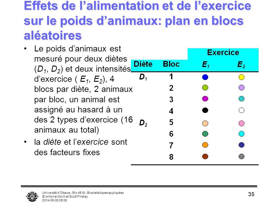 Effets de l'alimentation et de l'exercice sur le poids d'animaux: plan en blocs aléatoires