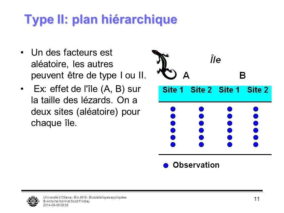 Type II: plan hiérarchique