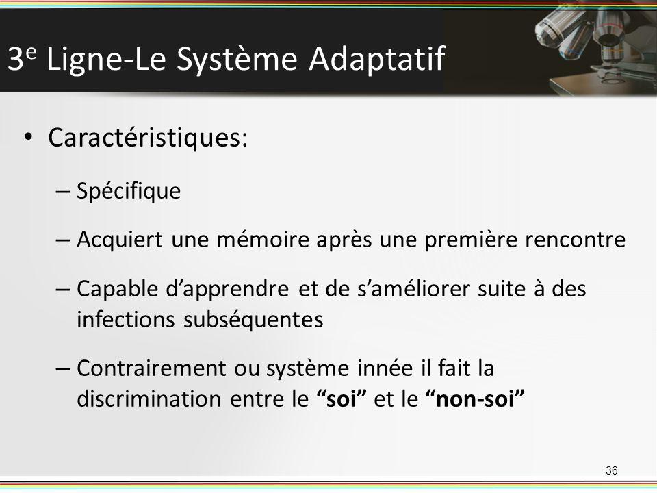 3e Ligne-Le Système Adaptatif