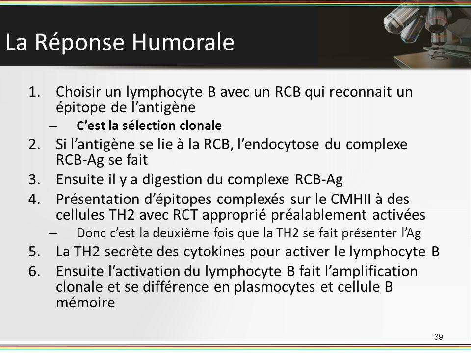 La Réponse Humorale Choisir un lymphocyte B avec un RCB qui reconnait un épitope de l'antigène. C'est la sélection clonale.