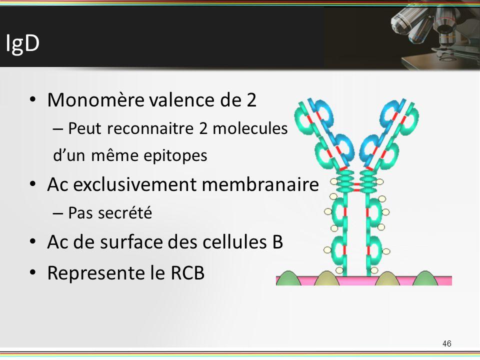 IgD Monomère valence de 2 Ac exclusivement membranaire
