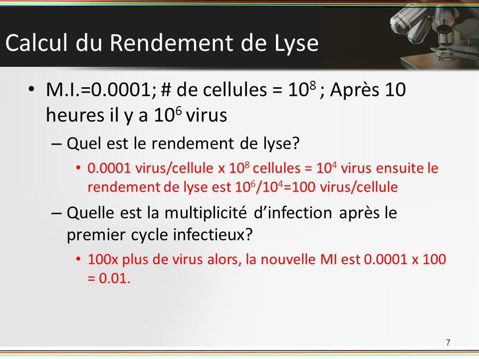 Calcul du Rendement de Lyse