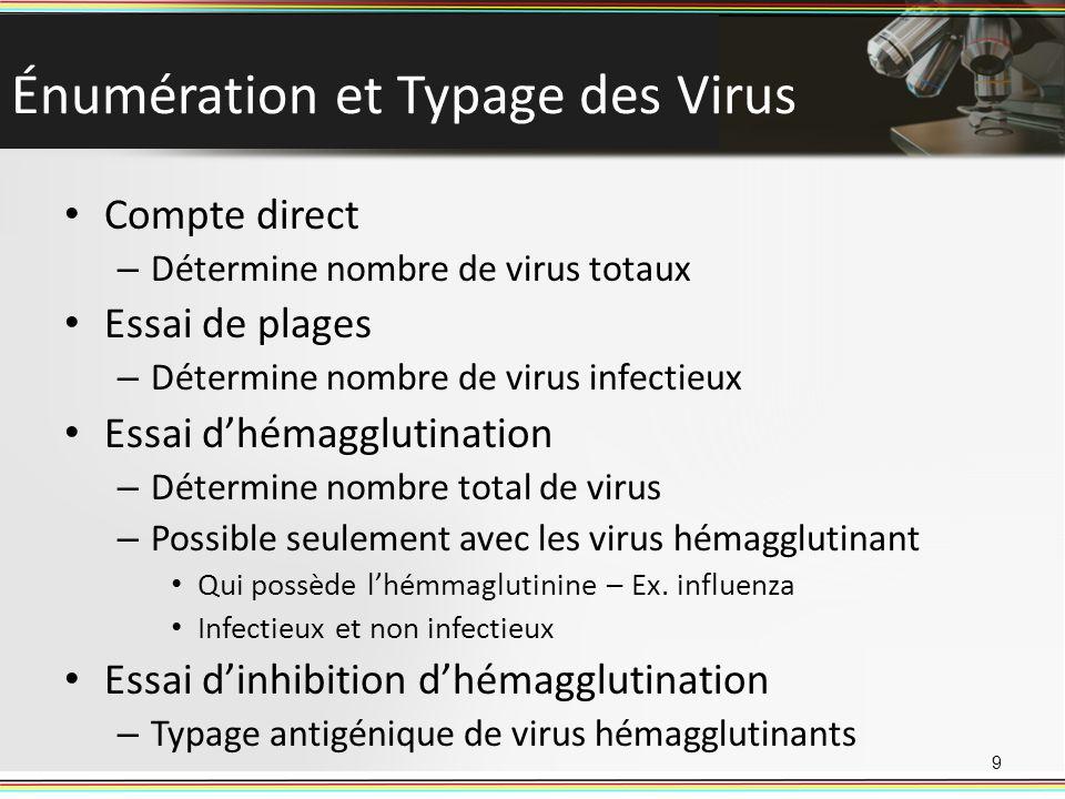 Énumération et Typage des Virus