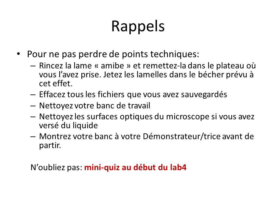 Rappels Pour ne pas perdre de points techniques: