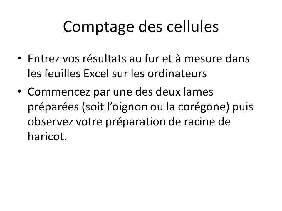 Comptage des cellules Entrez vos résultats au fur et à mesure dans les feuilles Excel sur les ordinateurs.