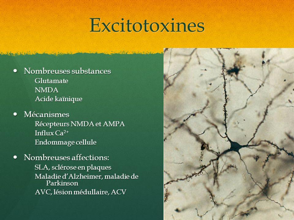 Excitotoxines Nombreuses substances Mécanismes Nombreuses affections: