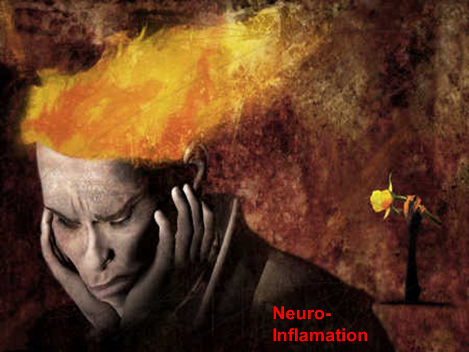 Neuro- Inflamation