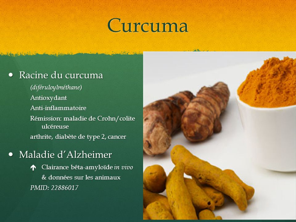 Curcuma Racine du curcuma Maladie d'Alzheimer (diféruloylméthane)
