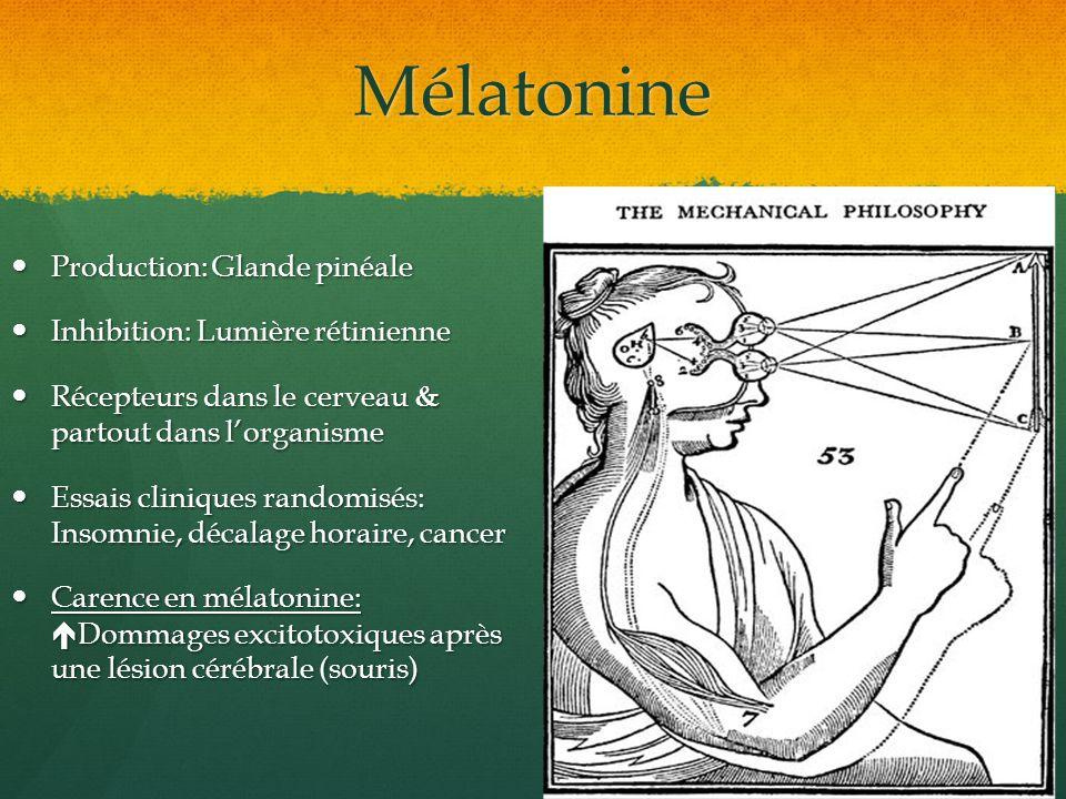 Mélatonine Production: Glande pinéale Inhibition: Lumière rétinienne