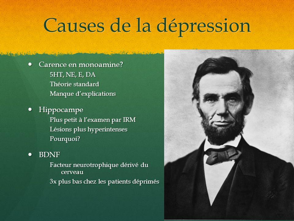 Causes de la dépression