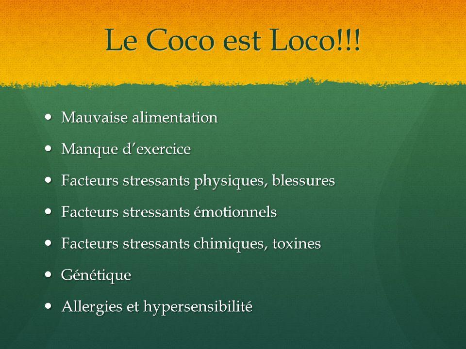 Le Coco est Loco!!! Mauvaise alimentation Manque d'exercice