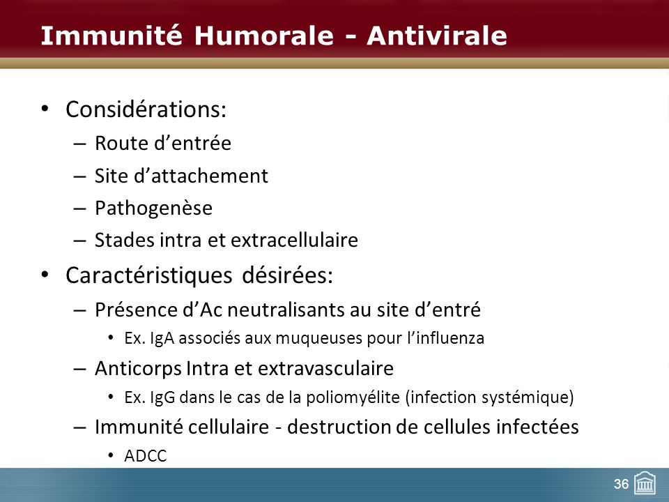 Immunité Humorale - Antivirale