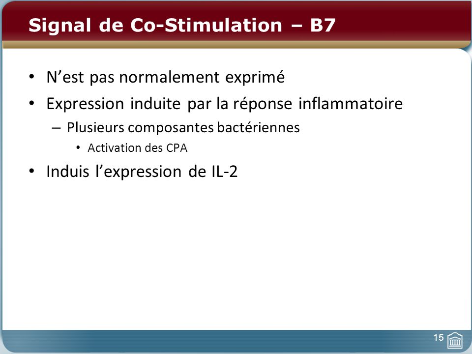 Signal de Co-Stimulation – B7