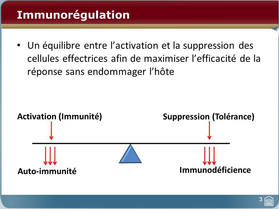 Immunorégulation