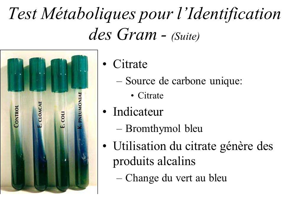 Test Métaboliques pour l'Identification des Gram - (Suite)