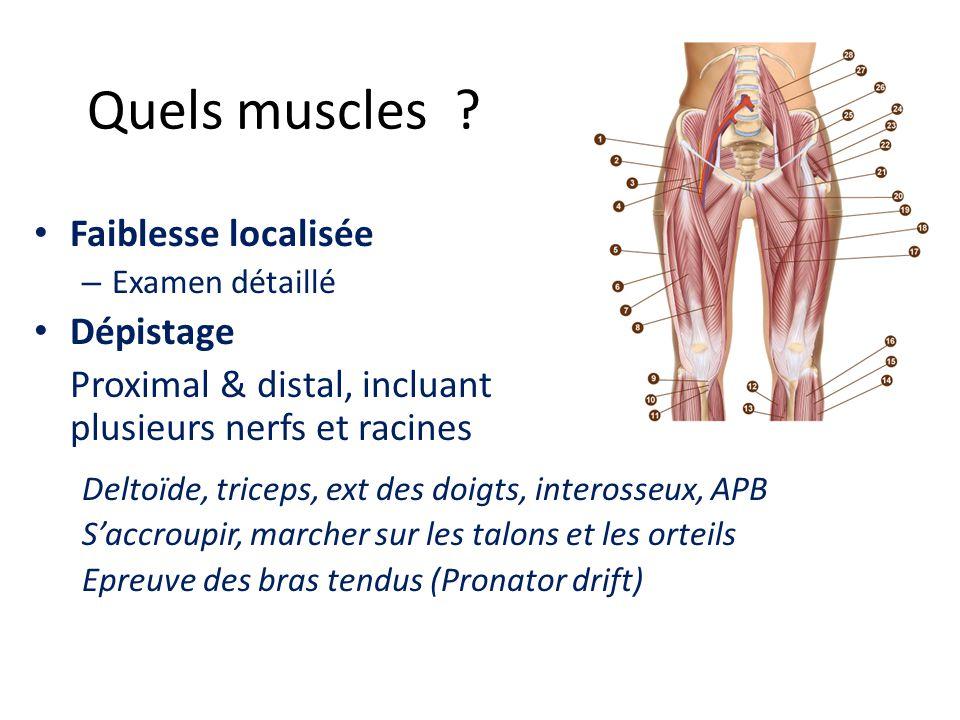 Quels muscles Faiblesse localisée Dépistage