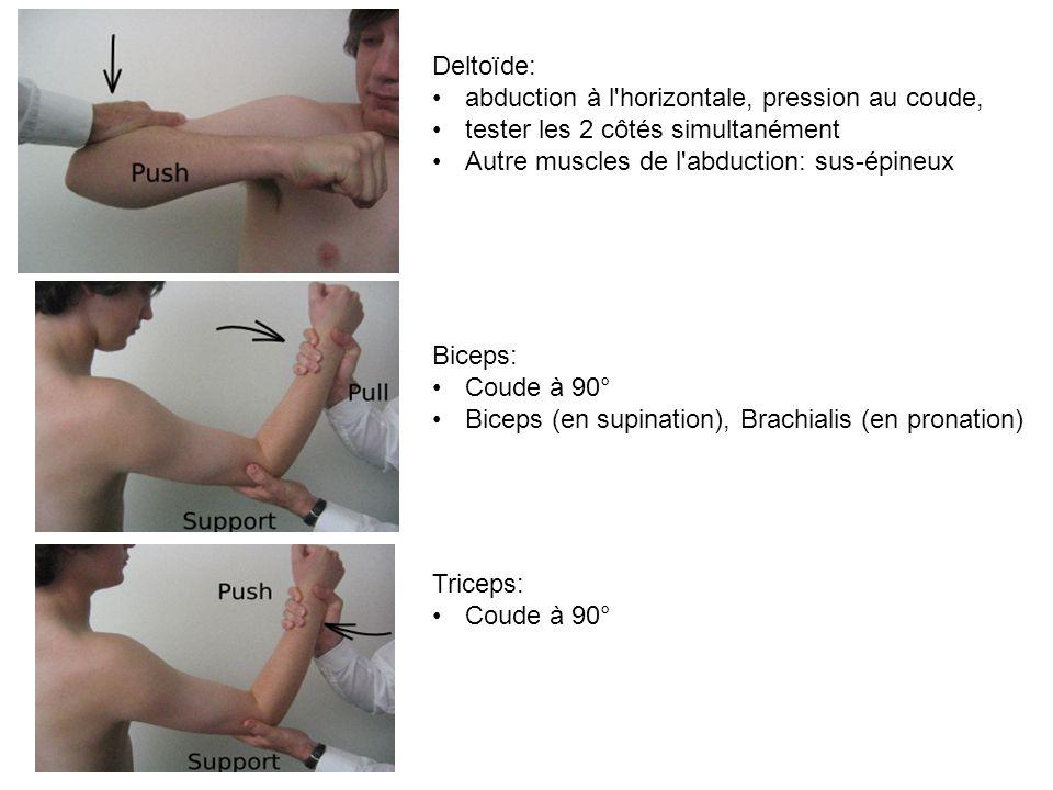 Deltoïde: abduction à l horizontale, pression au coude, tester les 2 côtés simultanément. Autre muscles de l abduction: sus-épineux.