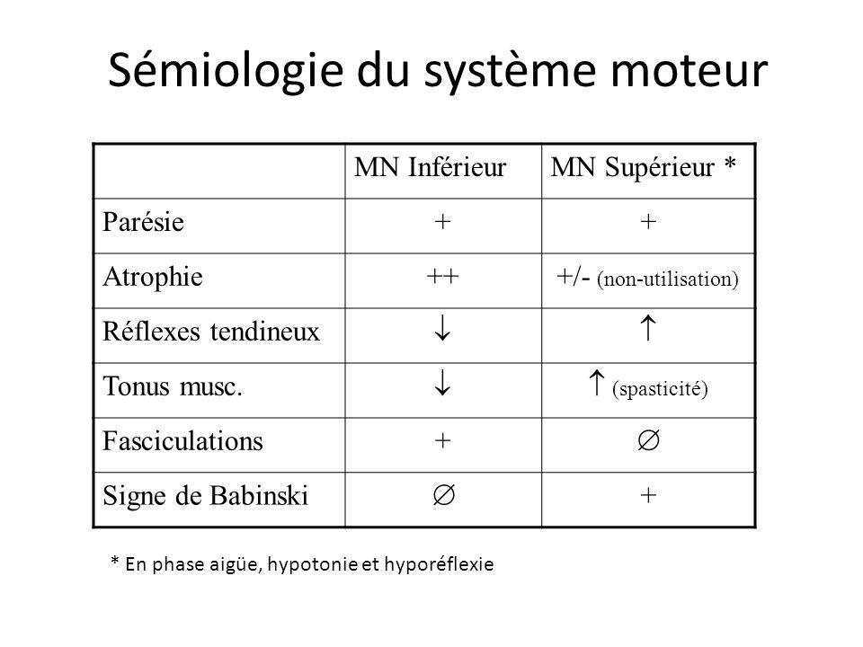 Sémiologie du système moteur