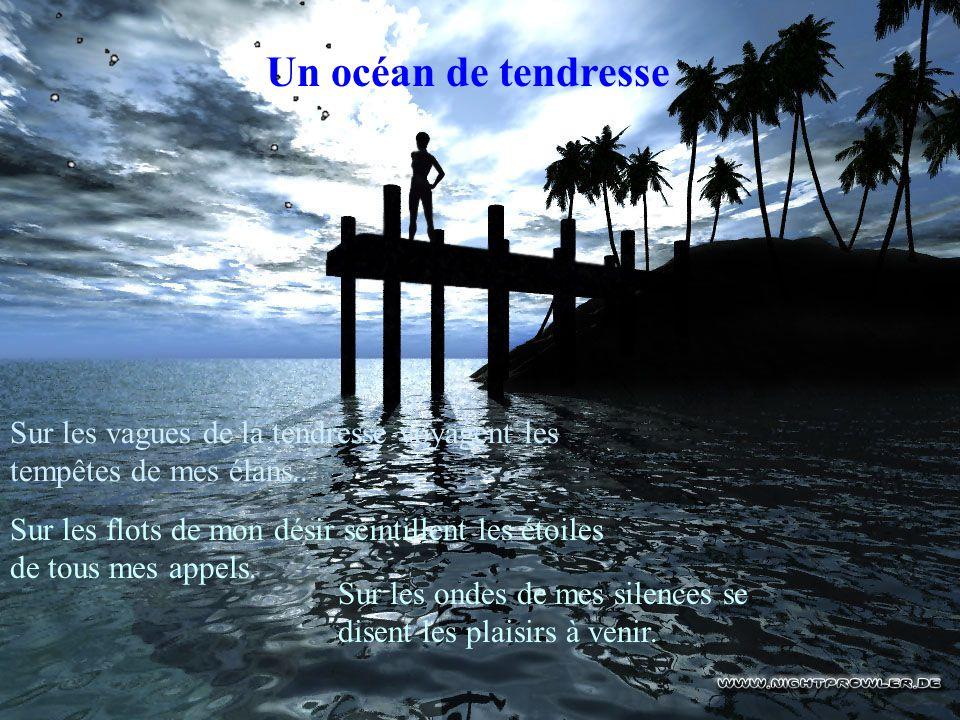 Un océan de tendresse Sur les vagues de la tendresse voyagent les tempêtes de mes élans..