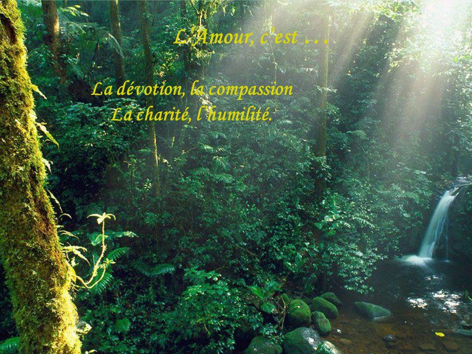 La dévotion, la compassion La charité, l'humilité.