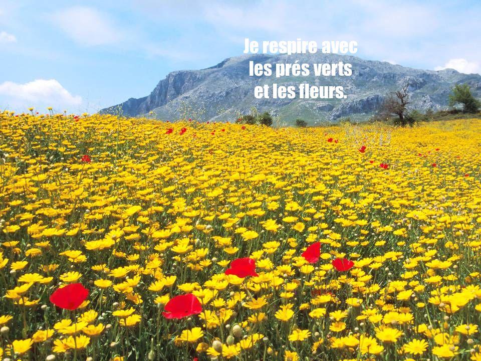 Je respire avec les prés verts et les fleurs.