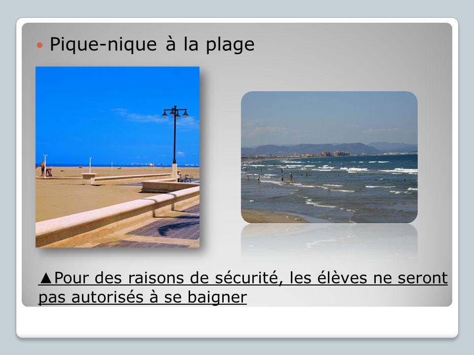 Pique-nique à la plage ▲Pour des raisons de sécurité, les élèves ne seront pas autorisés à se baigner.