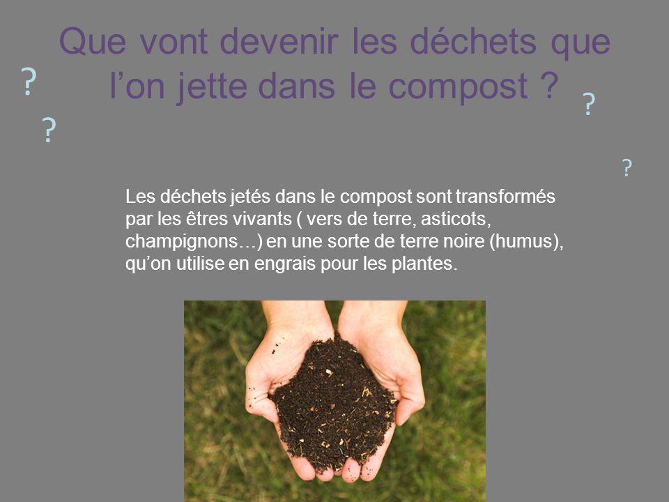 Que vont devenir les déchets que l'on jette dans le compost
