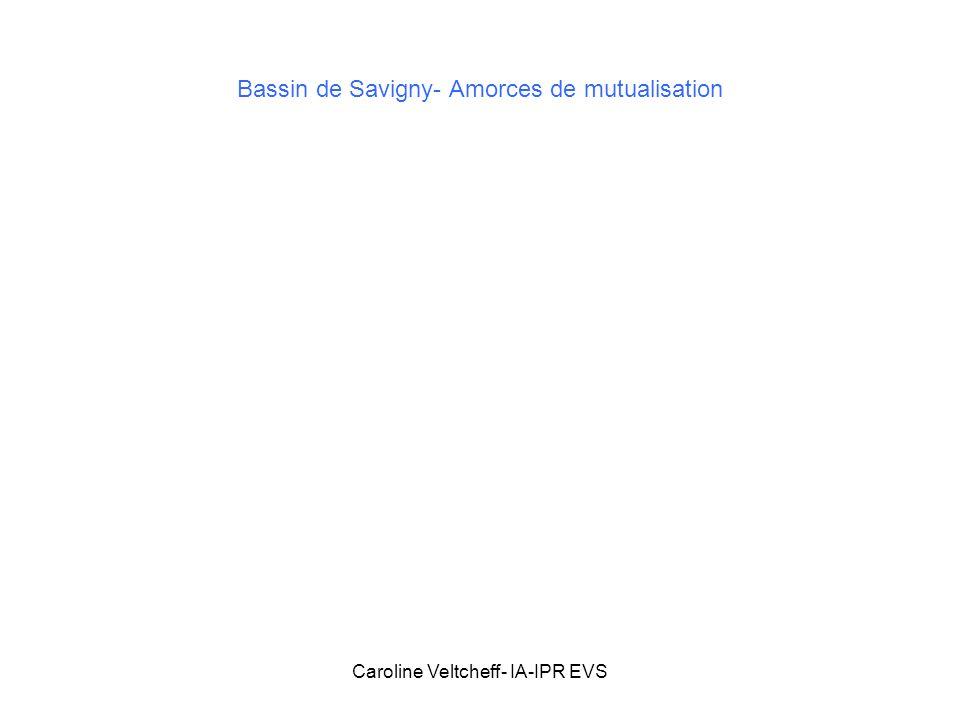 Bassin de Savigny- Amorces de mutualisation