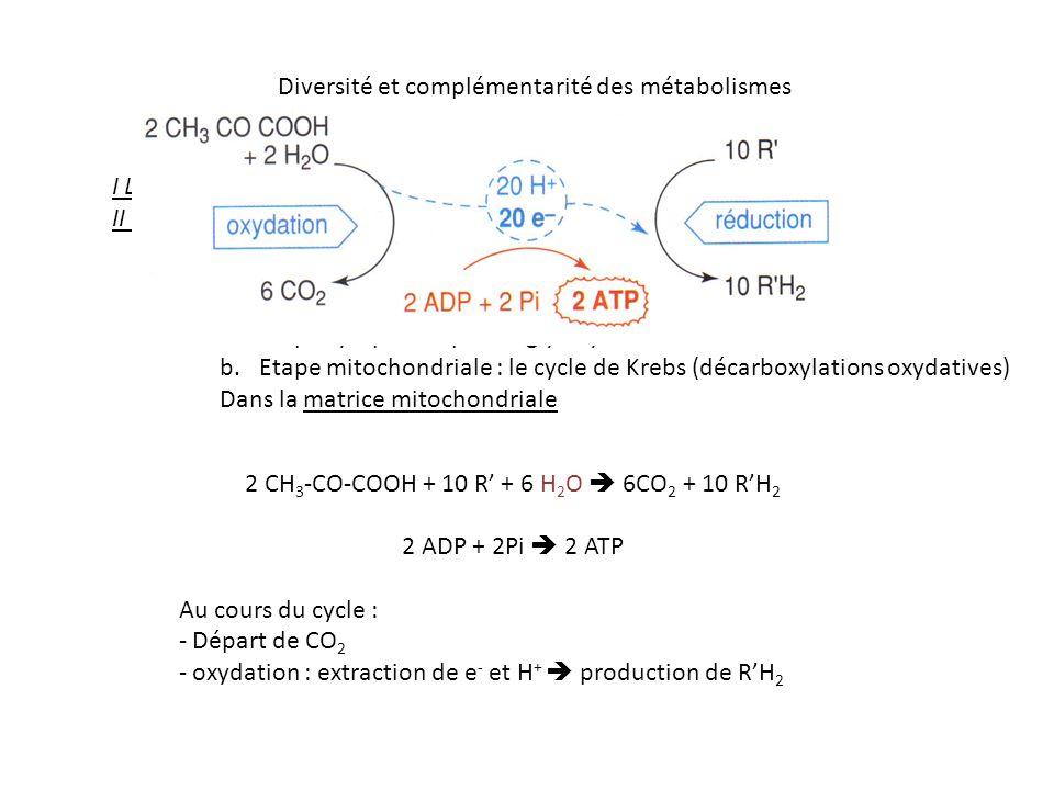 2 CH3-CO-COOH + 10 R' + 6 H2O  6CO2 + 10 R'H2