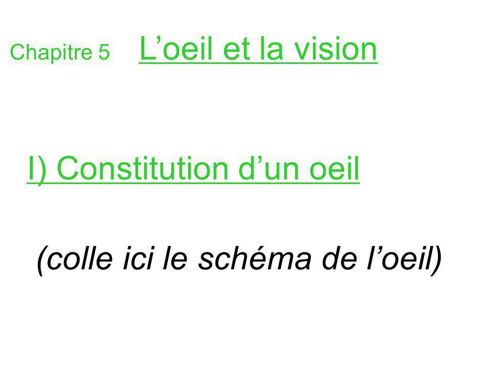 I) Constitution d'un oeil