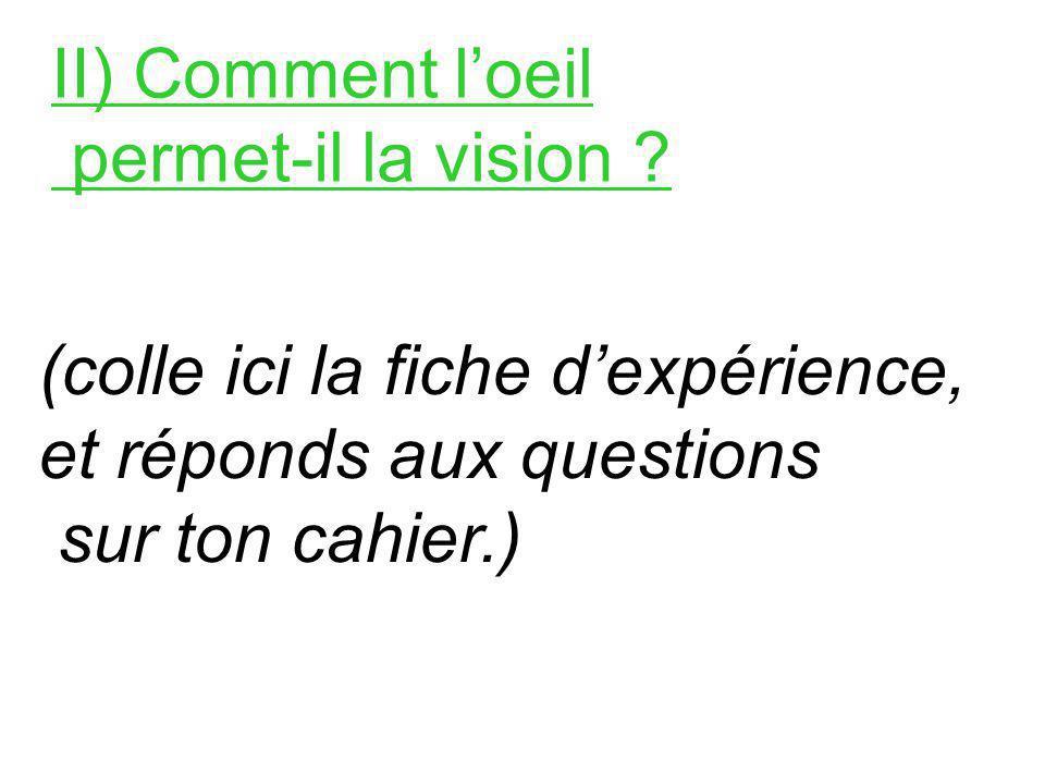 II) Comment l'oeil permet-il la vision