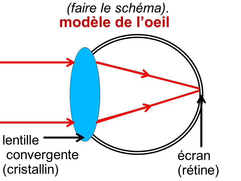 modèle de l'oeil (faire le schéma). lentille convergente (cristallin)