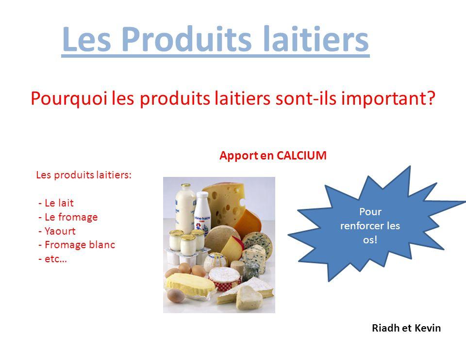 Pourquoi les produits laitiers sont-ils important
