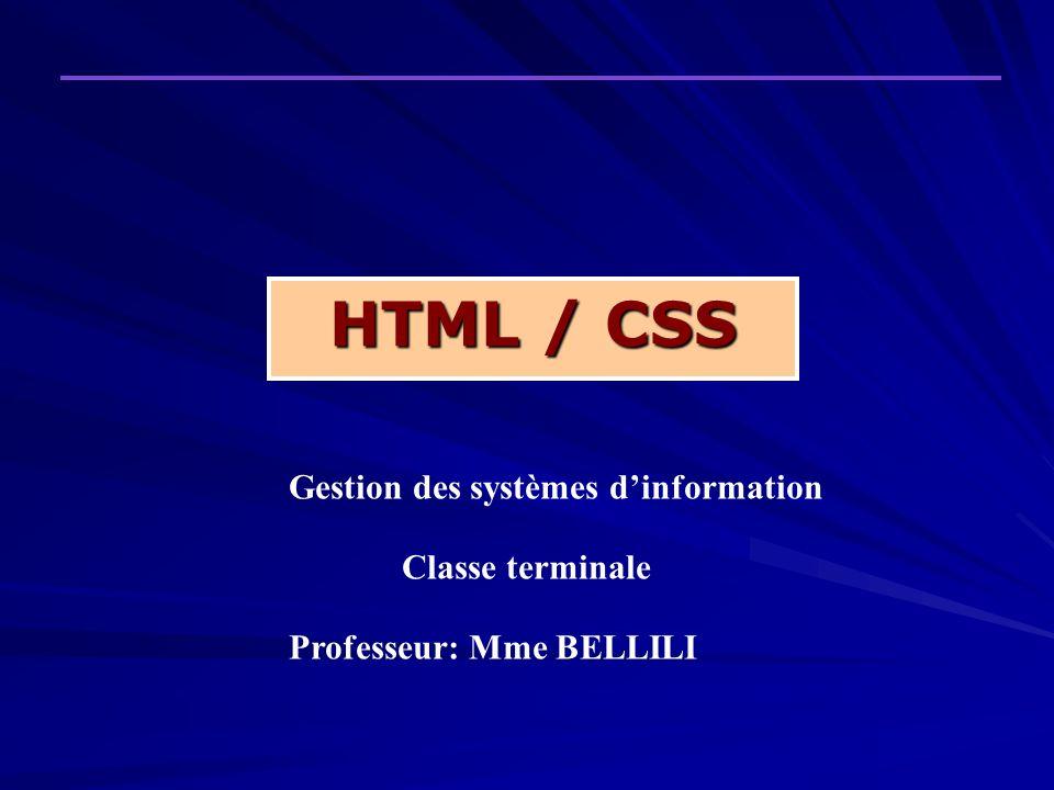HTML / CSS Gestion des systèmes d'information Classe terminale
