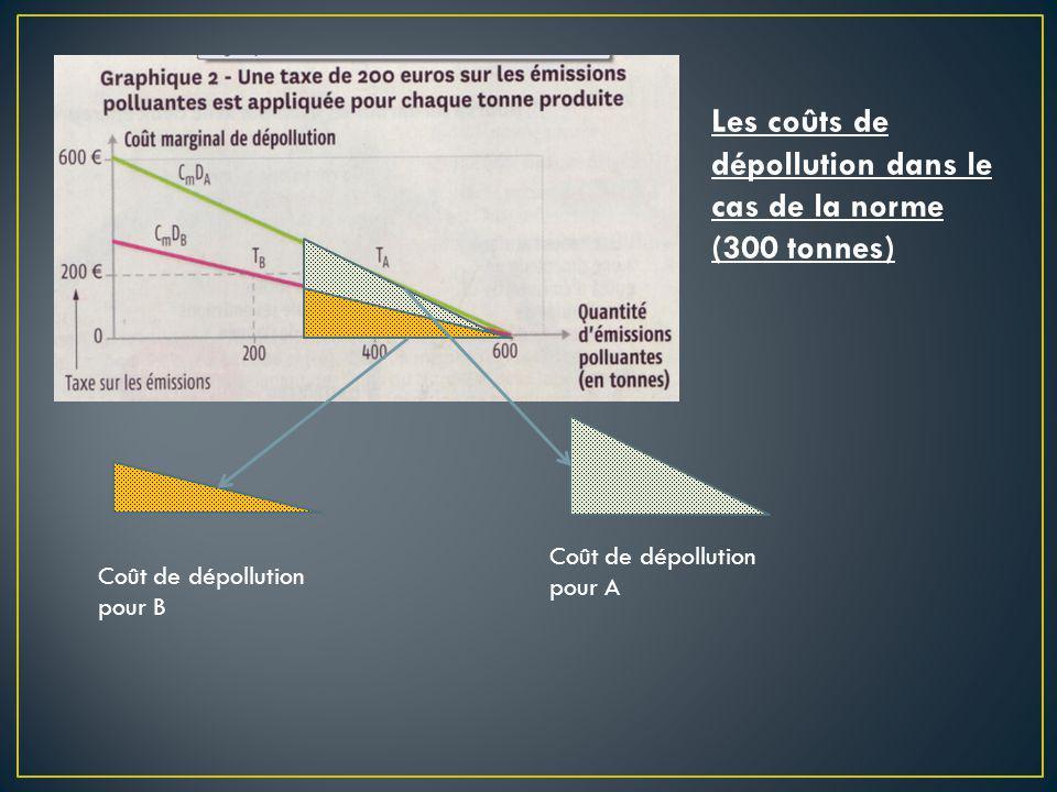 Les coûts de dépollution dans le cas de la norme (300 tonnes)