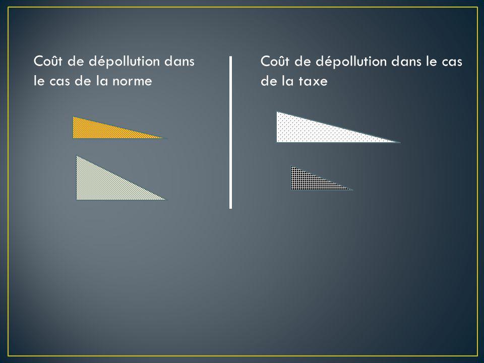 Coût de dépollution dans le cas de la norme