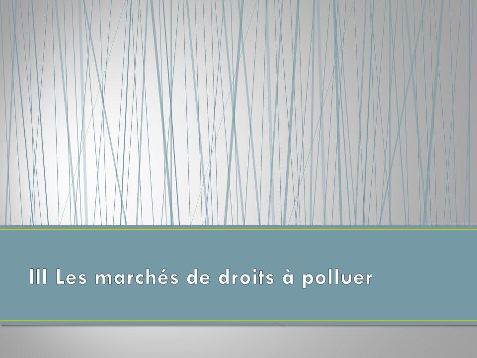 III Les marchés de droits à polluer