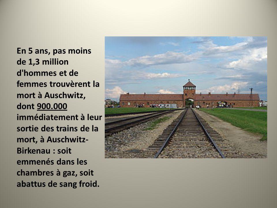 En 5 ans, pas moins de 1,3 million d hommes et de femmes trouvèrent la mort à Auschwitz, dont 900.000 immédiatement à leur sortie des trains de la mort, à Auschwitz-Birkenau : soit emmenés dans les chambres à gaz, soit abattus de sang froid.