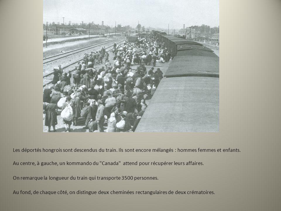 Les déportés hongrois sont descendus du train