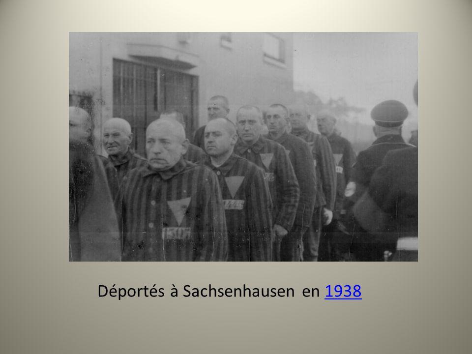 Déportés à Sachsenhausen en 1938