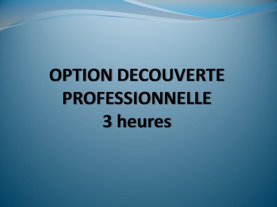 OPTION DECOUVERTE PROFESSIONNELLE 3 heures