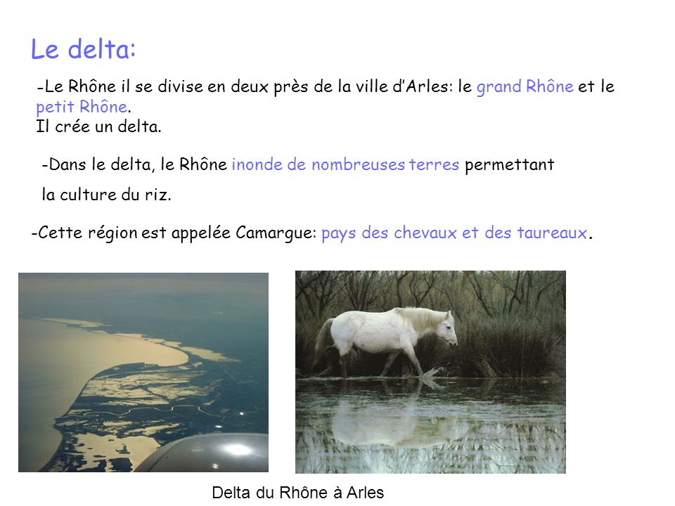 Le delta: Il crée un delta.