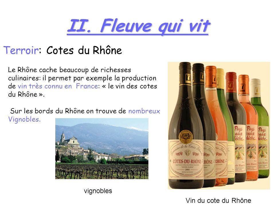 II. Fleuve qui vit Terroir: Cotes du Rhône