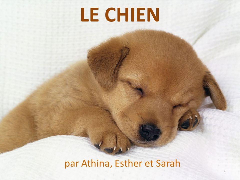 par Athina, Esther et Sarah