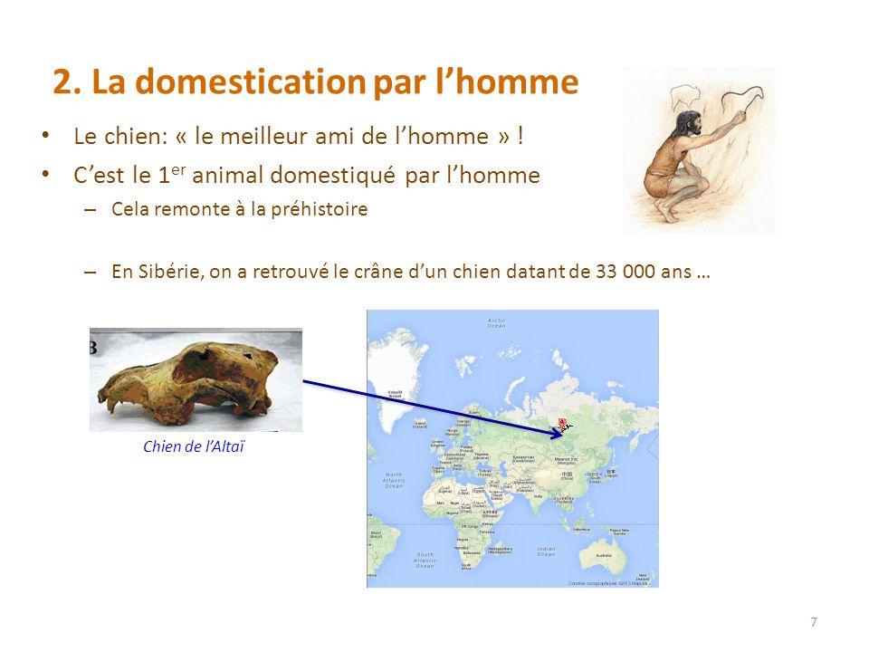 2. La domestication par l'homme