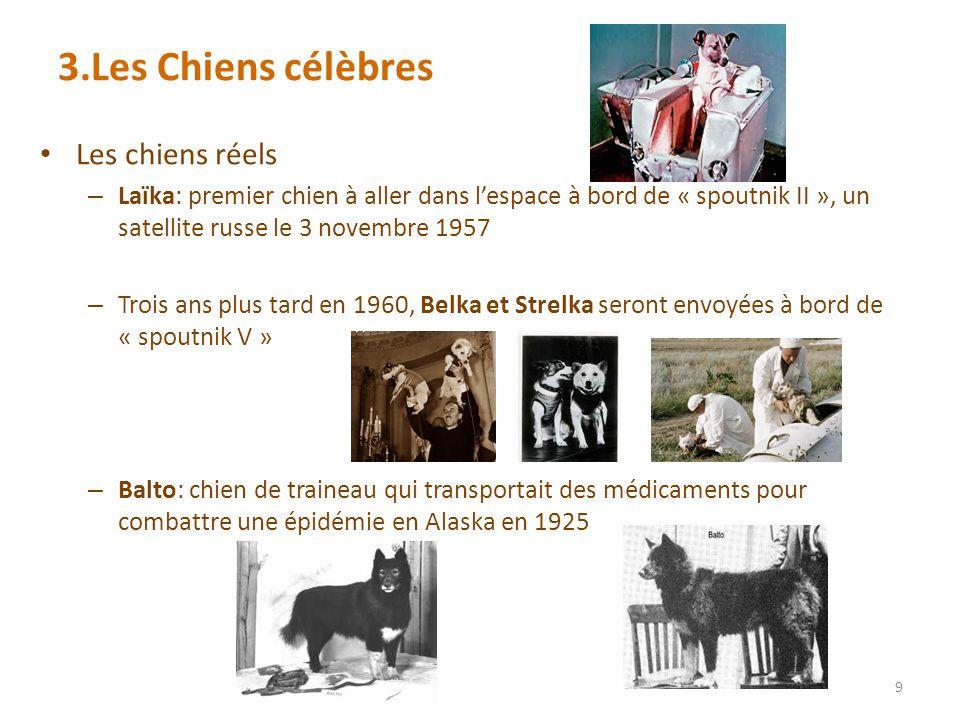 3.Les Chiens célèbres Les chiens réels