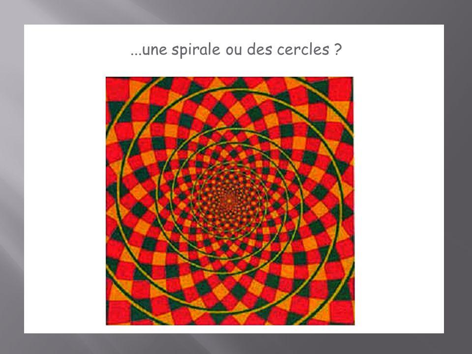 ...une spirale ou des cercles