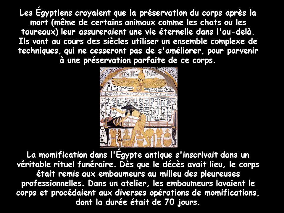 Les Égyptiens croyaient que la préservation du corps après la mort (même de certains animaux comme les chats ou les taureaux) leur assureraient une vie éternelle dans l au-delà. Ils vont au cours des siècles utiliser un ensemble complexe de techniques, qui ne cesseront pas de s améliorer, pour parvenir à une préservation parfaite de ce corps.